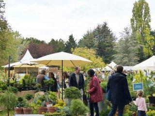 Tauzia fête les jardins - première édition