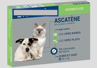 Vermifuger son chien ou son chat