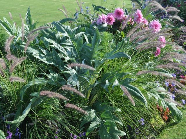 Mélangez fleurs et légumes dans vos massifs