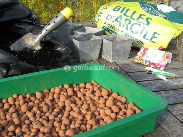 Superior Quand Semer Les Tomates #10: Caissette Pour Semis Avec Lit De Billes Du0027argile Agrandir Lu0027image