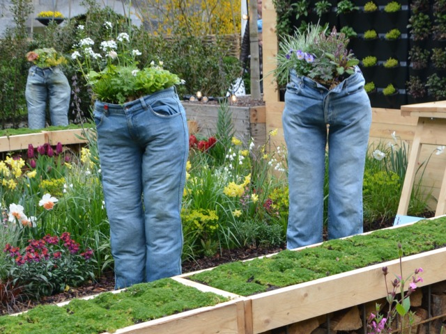 Plantes dans des jeans