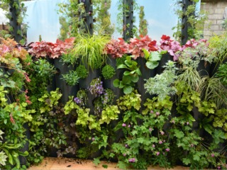 Idée pour terrasse : planter en hauteur / Clémentine Desfemmes