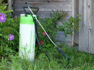 Pulvérisateur de jardin à pression