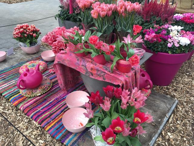 Décor rose (Visite du Keukenhof, Pays-Bas, mai 2017)