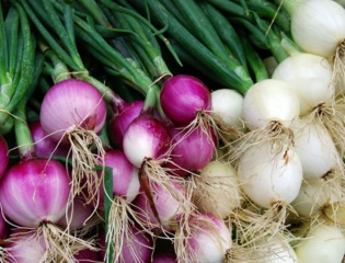 Oignons rouges et blancs à consommer frais