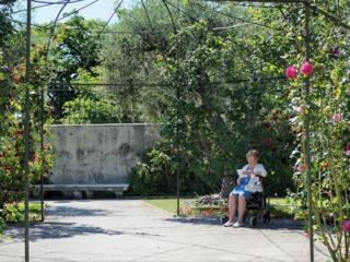 Les jardins thérapeutiques : effets bénéfiques, aménagement