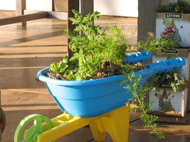Brouette d'enfant recyclée (Plantations dans des contenants insolites)