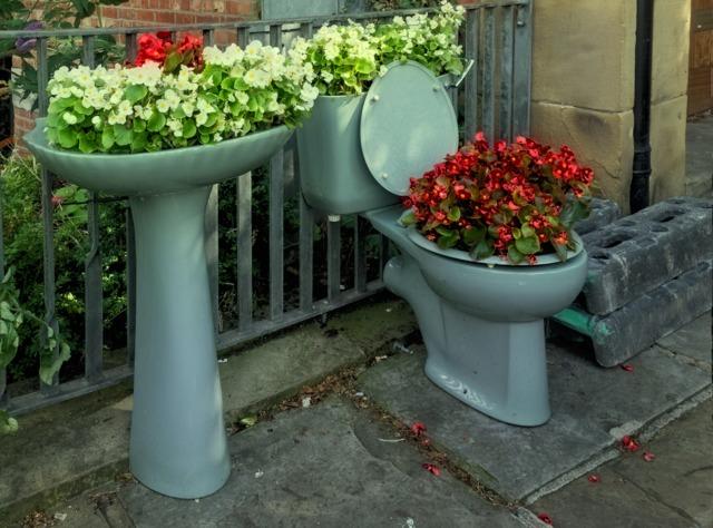Salle de bain végétalisée (Plantations dans des contenants insolites)