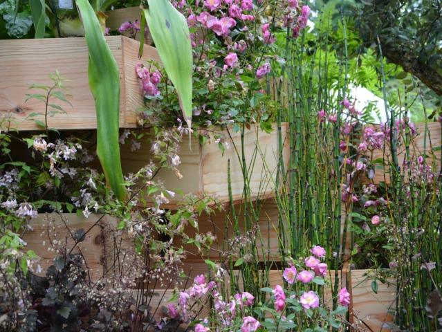 Plantes installées dans des caisses de vin