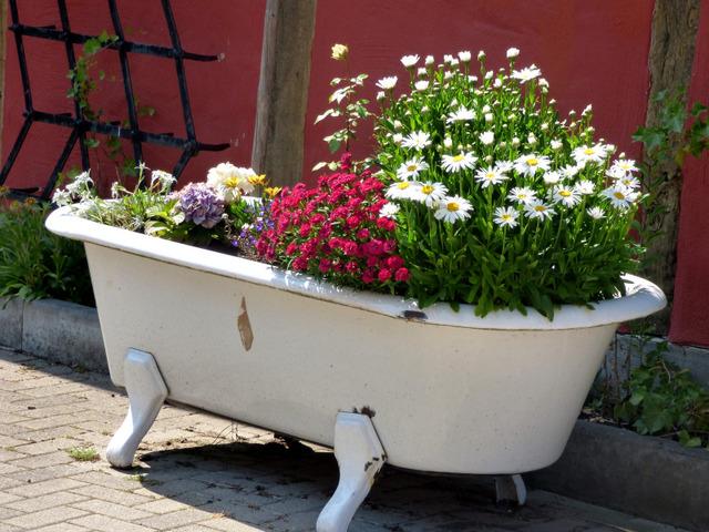 Baignoire recycl e en jardini re plantations dans des - Baignoire bouchee que faire ...
