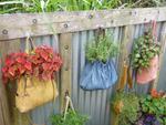 Diaporama : Plantations dans des contenants insolites