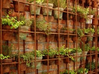 Habillage d'un mur avec plantes et acier Corten