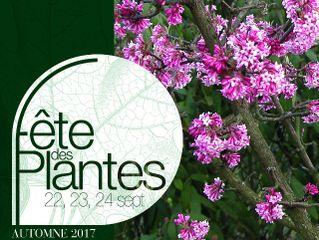Fête des Plantes d'Automne - Saint-Jean de Beauregard - septembre 2017