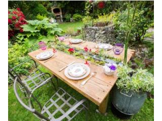 Table Aquavégétale - Esprit Vert / D.R.