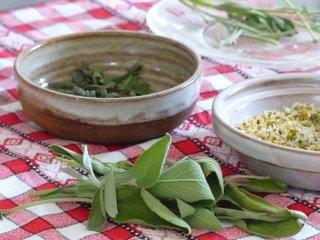 Cueillette de plantes aromatiques / X.G.