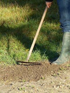 Ratissage des mauvaises herbes (faux semis)