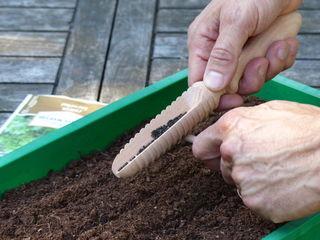 Semis en terrine avec semoir compte-graines