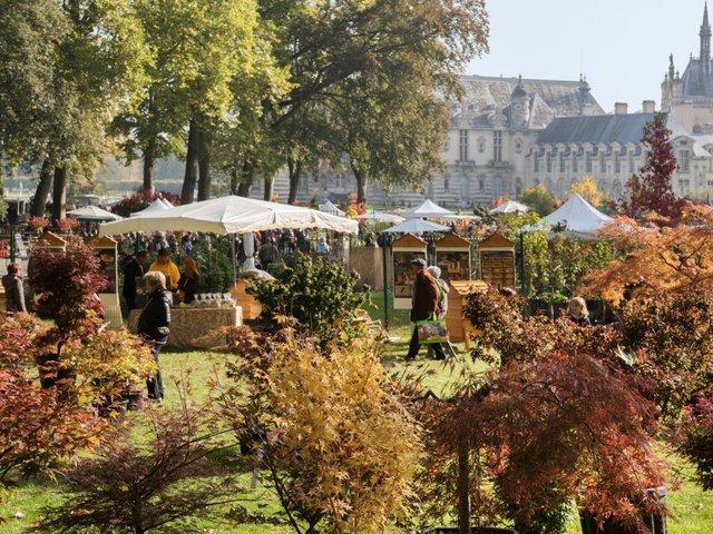 Fête des plantes de Chantilly - octobre 2018