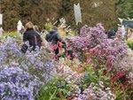 Journées des Plantes de Chantilly, les 13, 14 et 15 octobre 2017