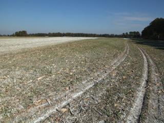 Parcelle agricole chaulée - Amendement calcique