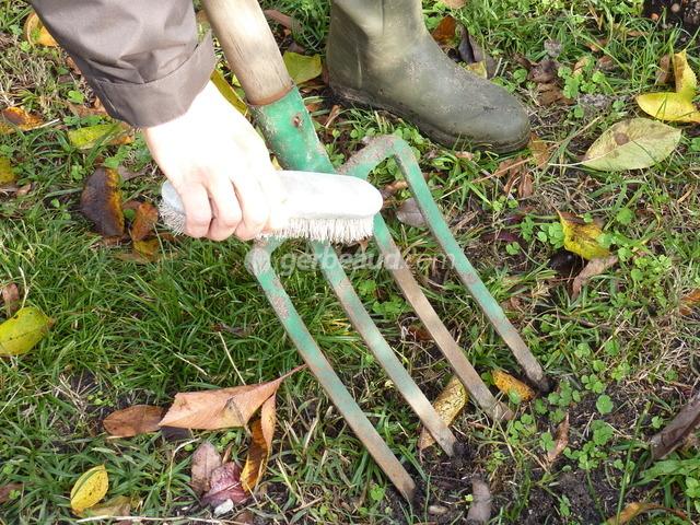 Outils de jardin : conseils d'entretien