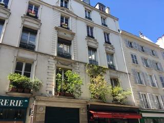 Plantes sur des rebords de fenêtres parisiens