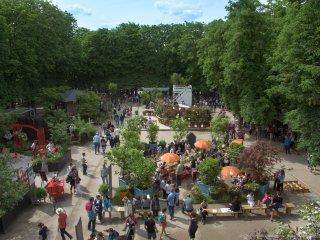 Jardins, Jardin 2017 - Carré du Sanglier / C.Madamour