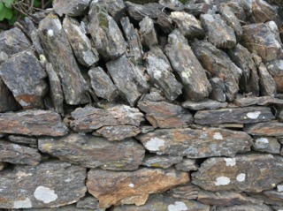 Un mur en pierre sèche offre de nombreuses cavités