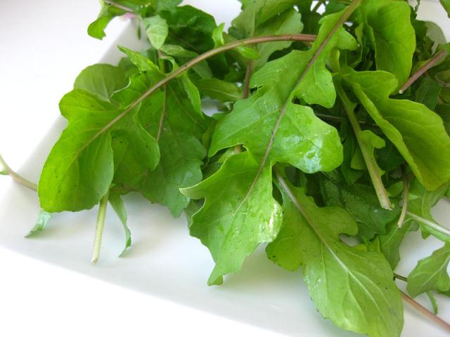 Semer et cultiver la roquette, une salade pleine de piquant !