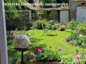 Blog jardin - tous nos sujets