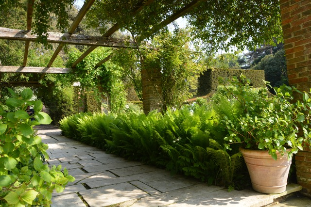 Le Bois des Moutiers (Seine-Maritime) (Les plus beaux jardins de France)
