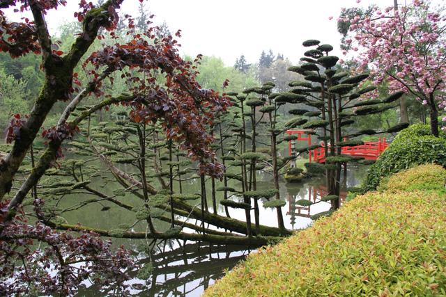 parc oriental de maul vrier maine et loire les plus beaux jardins de france. Black Bedroom Furniture Sets. Home Design Ideas