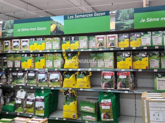 Gazon : les avantages du semis automnal