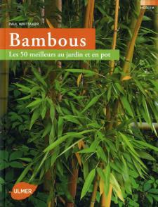 Barriere Anti Rhizome Stopper Les Bambous Envahissants