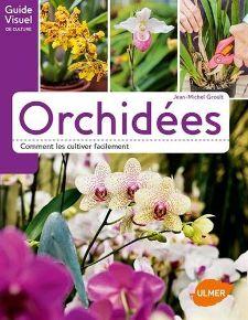 Les orchidées - fiches pratiques