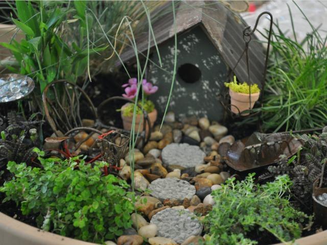 Comment aménager un jardin miniature ?
