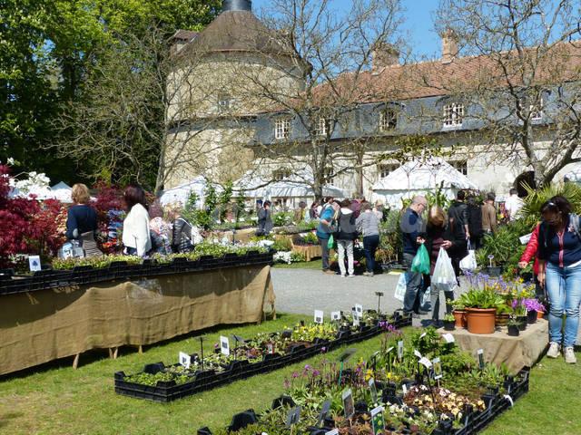 Fête des Plantes de Saint-Jean de Beauregard, 12-13-14 avril 2019