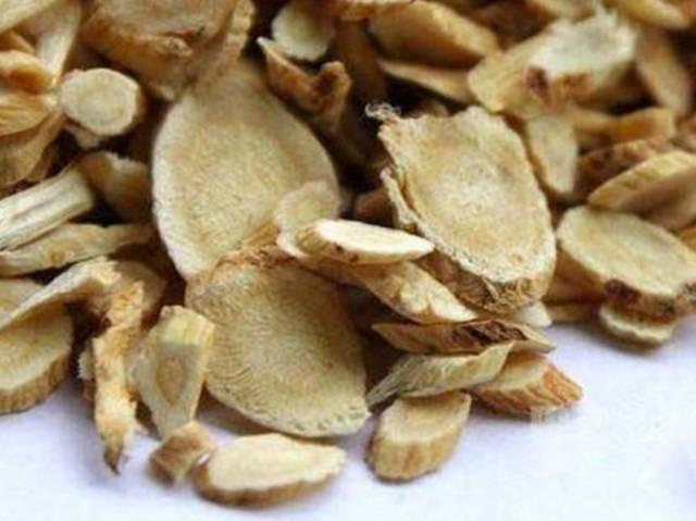 Plante Astragale : Pas cher - Plante - Propriétés | Quels sont les effets secondaires ?