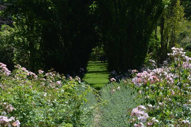 Jardin + Ombre + Lumière | Tout