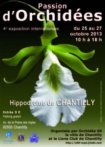 Passion d'orchidées - Chantilly - Octobre 2013