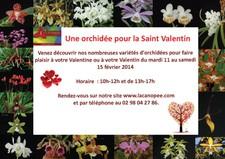 Les journées portes ouvertes de la St Valentin à La Canopée - PLOUGASTEL-DAOULAS - Février 2013