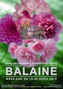 Journées des Plantes Aglaë Adanson à l'ARBORETUM DE BALAINE  - VILLENEUVE-SUR-ALLIER (03 - allier) - Avril 2014