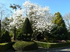 Portes ouvertes au Jardin botanique des Montagnes Noires - Spézet (29540) - Avril 2014