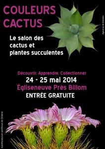 Couleurs Cactus  - 7ème édition  - Égliseneuve - Mai 2014