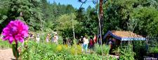 Journée Portes Ouvertes au Centre écologique Terre vivante - Mens - Juin 2014