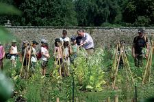 Journées Plantes et Saveurs au potager - Pleugueneuc - Septembre 2014