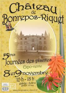 journées des plantes du château de Bonrepos-Riquet - Bonrepos-Riquet - Novembre 2014