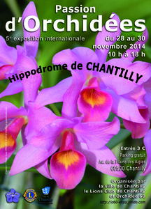 Passion d'Orchidées - Chantilly - Novembre 2014
