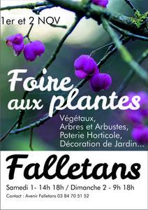 Foire aux Plantes de Falletans - Falletans - Novembre 2014