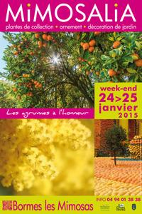 Mimosalia - Bormes Les Mimosas - Janvier 2015